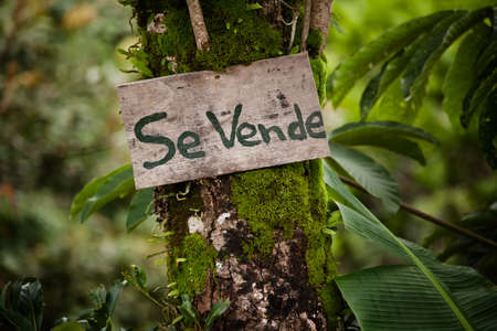 announcing: Wooden sign announcing real estate for sale in Costa Rica