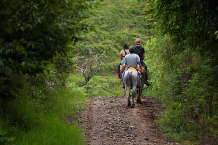 rican: Tourists on horseback in Costa Rican cloud forest Stock Photo