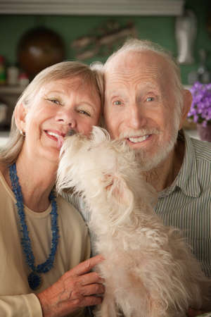 Senior couple with cute white dog photo