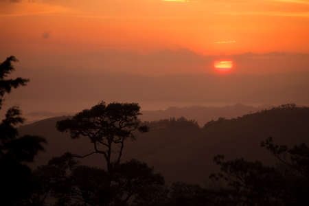Beautiful sunset in a Latin American rain forest  photo