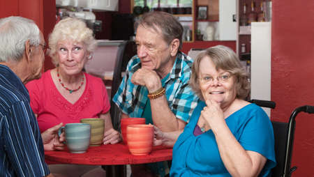senior group: Group of adorable senior citizens talking in a cafe Stock Photo