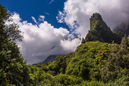 dormant: Natural geographic needle in the Iao Valley Rainforest