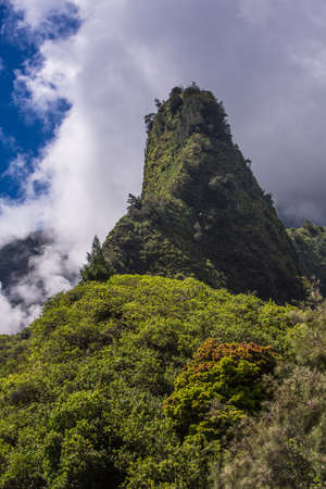 dormant: Hawaiian geographic needle in the Iao Valley Rainforest