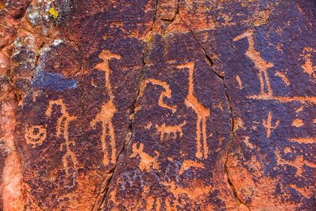 native american: Water birds and other symbols in Sinaguan Style petroglyph