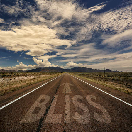 bliss: Conceptual image of desert road with the word bliss and arrow Stock Photo
