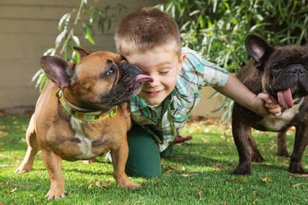 french kiss: Little boy playing with affectionate of dogs outdoors Stock Photo