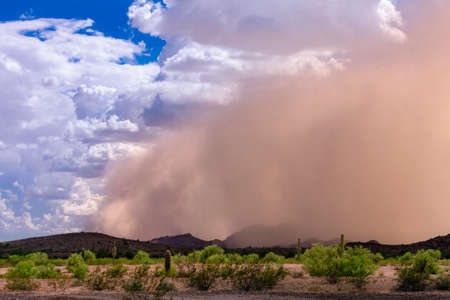 Vanguardia de la tormenta de polvo de Haboob en el desierto de Arizona