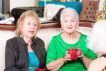 Three senior women enjoying each spending time together