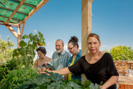 Diverse seniors working together in a community garden Foto de archivo - 142915576