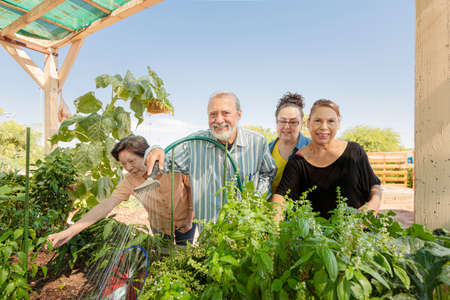 Diverse seniors together tending to a community garden