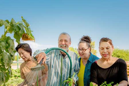 Diverse seniors working together tending a community garden