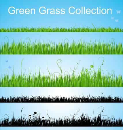 lawn: Vector gras collectie Stock Illustratie