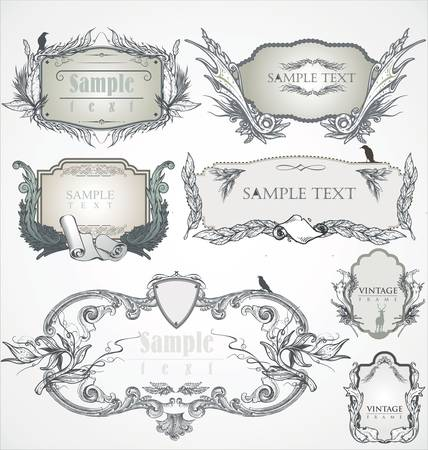 hand drawn frame: Vintage frame. Flourish heraldry elements.  Illustration