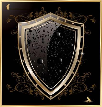 방패: 검은 물 방울과 방패