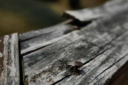 splintered: Rusty Nail in Splintered Wood