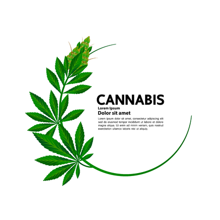 Cannabis benefit for medical vector.