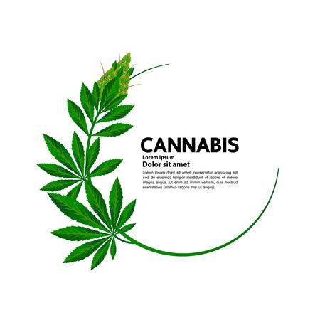 Le cannabis bénéficie d'un vecteur médical. Vecteurs