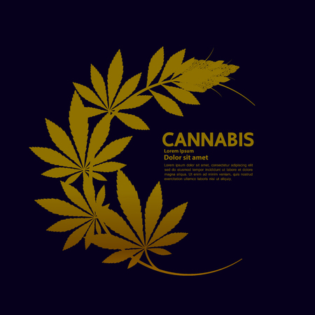 Cannabis for medical vector. Standard-Bild - 116059568