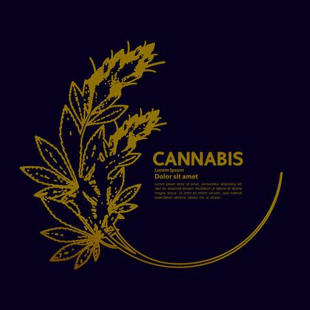 Cannabis for medical vector. Vektoros illusztráció