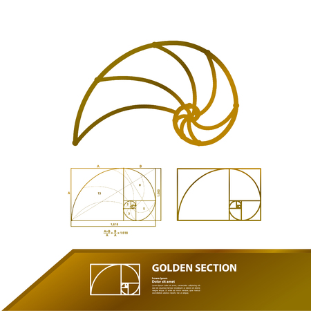 Golden ratio for creative design section vector illustration. Illustration