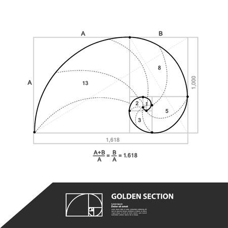 Golden ratio for creative design section vector illustration.