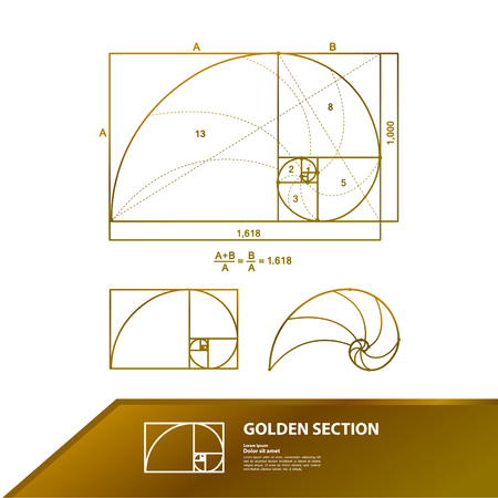 Golden ratio for creative design section vector illustration. Vectores