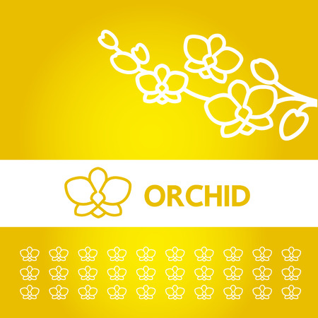 Premium grand Orchid design concept vector.