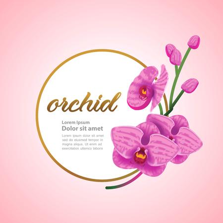 Premium grand Orchid design concept vector. Stock Illustratie