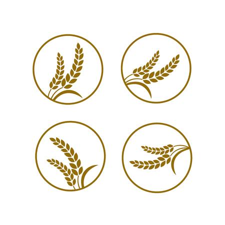 Premium Rice great quality design concept  vector. Illusztráció