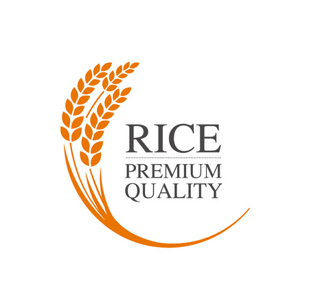 Premium Rice great quality design concept  vector. 일러스트