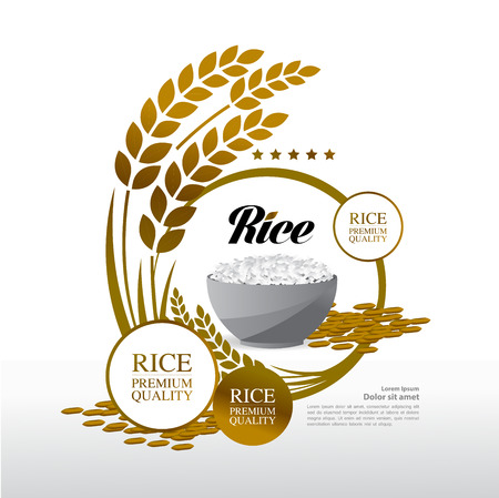 Premium Rice great quality design concept  vector.  イラスト・ベクター素材