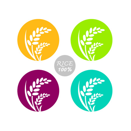 Premium Rice great quality design concept  vector. Illustration