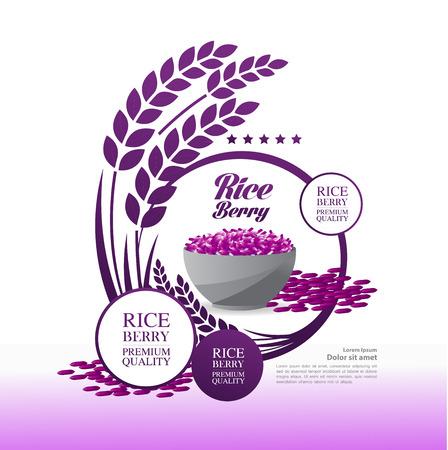Premium Rice Berry great quality design concept  vector. Иллюстрация
