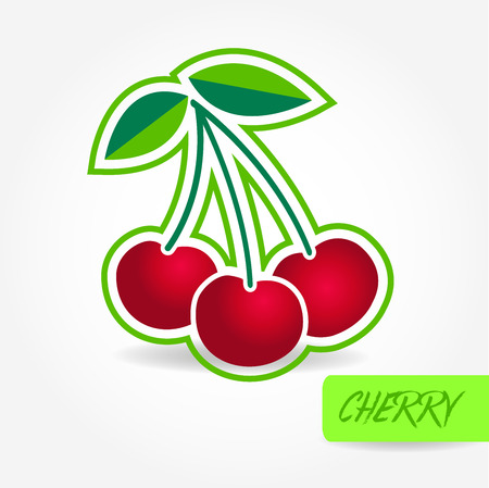 Cherry vector illustration.