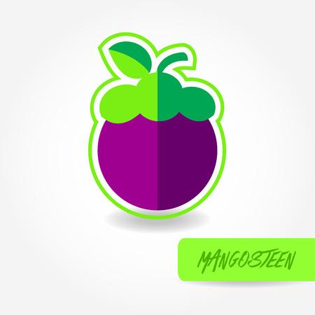 Mangosteen  vector illustration.