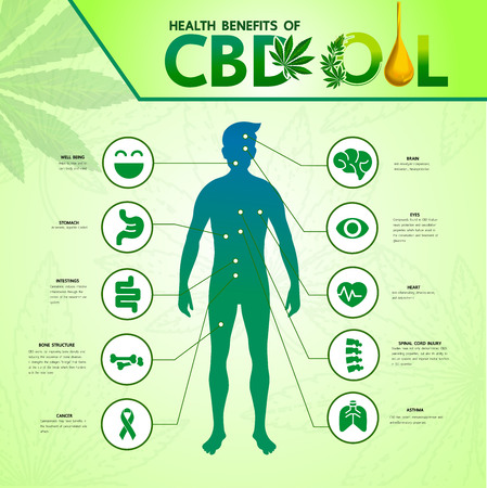 Cannabis benefits for health vector illustration. Фото со стока - 119739068