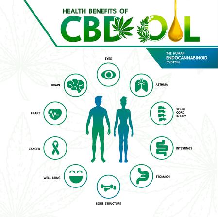 Beneficios del cannabis para la ilustración de vector de salud. Ilustración de vector