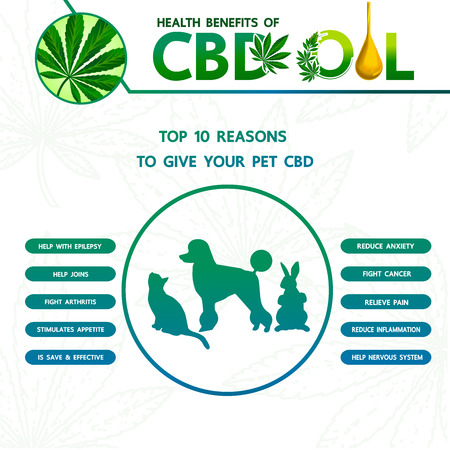 Cannabis benefits for pet health vector illustration.