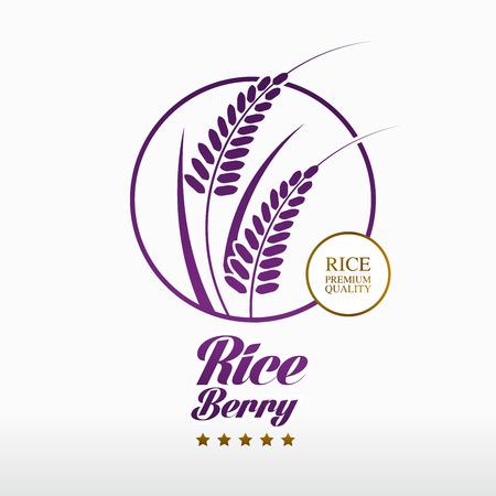 Premium Rice Berry great quality design concept