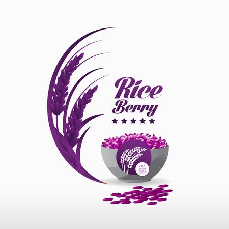Premium Rice Berry great quality design concept  vector. Illustration