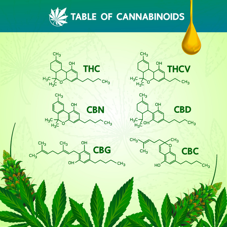 Table of cannabinoilds illustration. Фото со стока - 122355780