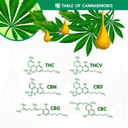 Table of cannabinoilds illustration.