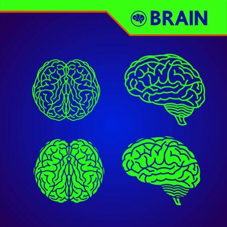 The creative human brain grand vector illustration.