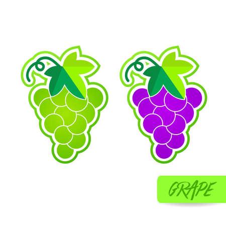 The Grape fresh fruit graphic vector illustration.