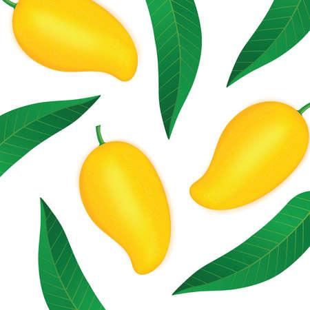Mango fresh fruit graphic  illustration.