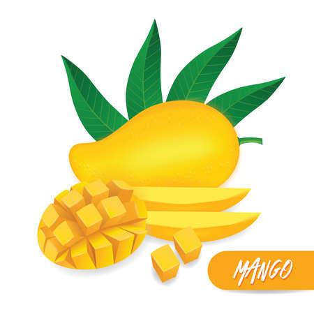 Mango fresh fruit graphic vector illustration.