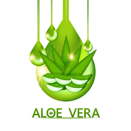Aloe Vera collagen and Serum for skin Care Cosmetic vector illustration.