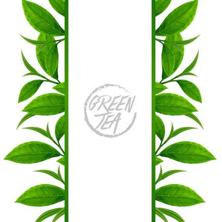 The Premium green tea for good health vector illustration.