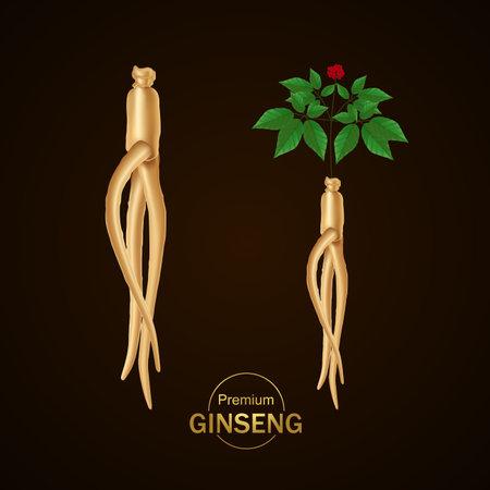 Ginseng for good health elegant vector illustration.