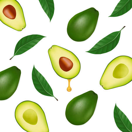 The fresh Avocado for good health elegant vector illustration.